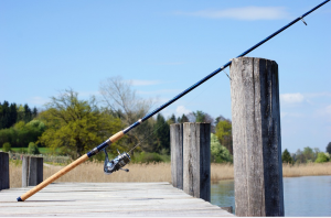 length of fishing rod matters
